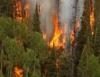 Combate a incêndios! Como deve ser feito a detecção e mobilização?