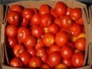 Feira da Agricultura Familiar e do Trabalhador Rural começa nesta quinta, dia 04