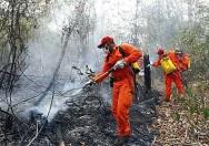 O rescaldo é realizado com duas atividades, apagar todos os focos ativos e eliminar combustíveis dentro da área.