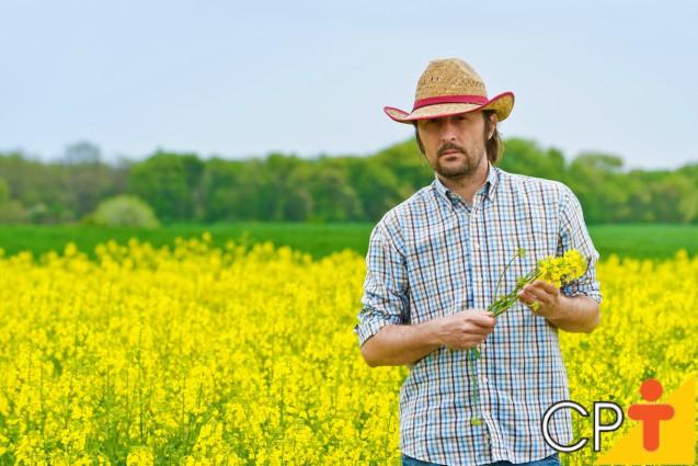 O biocombustível traz benefícios econômicos, sociais e ambientais   Artigos Cursos CPT