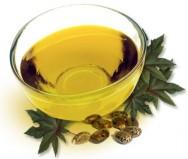 O óleo de mamona também pode ser um substituto do petróleo na sintése de diversos produtos.