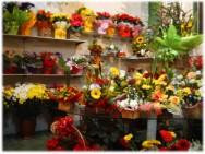 Diante do potencial de mercado de flores, abrir uma floricultura pode representar um excelente investimento.