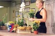 O vendedor deve repassar aos seus clientes as orientações sobre os cuidados com as flores