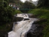 Coco e bagaço de cana podem despoluir rios