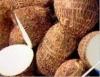 Hormônios bioidênticos do inhame e da soja podem atrasar envelhecimento