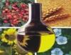 Produção de óleo vegetal, comestível e biocombustível