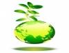 Avaliação de impactos ambientais, medida legal e ecológica