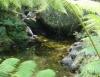 Tratamento e captação de água no campo