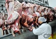 Como fazer o abate de caprinos e suínos