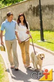 Como montar um pet shop - passeio com os cães