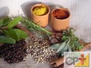Plantas condimentares - origem do uso das ervas condimentares
