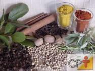 Plantas condimentares - ação terapêutica