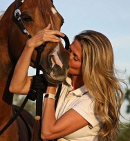 Entenda os cavalos e saiba como lidar com eles