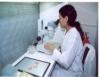 Brasil é referência no melhoramento genético da pecuária de corte