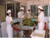 Higienização na indústria de alimentos, sinônimo de qualidade e saúde