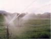 Boas práticas agrícolas contribuem para a sustentabilidade ambiental