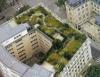 Telhado verde é a nova tendência do paisagismo ambiental