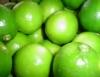 Limão Taiti é assunto em encontro de produtores e estudiosos
