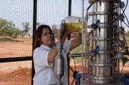 Craqueamento do óleo vegetal