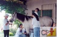 Para evitar a indocilidade de um cavalo, nunca o leve de volta ao piquete após uma atitude errada