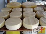 Queijo minas frescal: fabricação do queijo