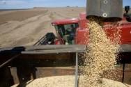 Tendências de mercado no agronegócio