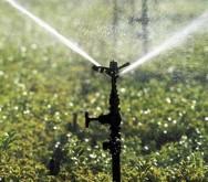 Aprenda Fácil Editora: Irrigação e sua influência na produtividade