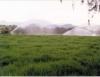 Irrigação por aspersão é a mais adequada para a maioria das culturas