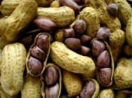Produtores de amendoim de Minas aguardam bons resultados no ano