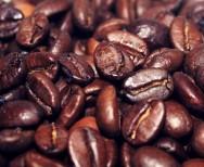 Conab prevê safra recorde de café