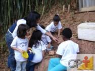 O trabalho com os seres vivos e as suas relações com o meio oferecem oportunidades de aprendizagem para a criança