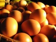 O ovo, ao contrario do que pensam, não tem relação com o aumento do colesterol. É um alimento muito nutritivo e saudável.