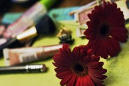 Maquiagem: jogo de pincéis