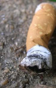 Mundo das drogas: tipos de tabagistas