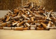 Mundo das drogas: toxidade aguda