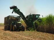 Aprenda Fácil Editora: Quase 10% de aumento na produção de açúcar no Mato Grosso