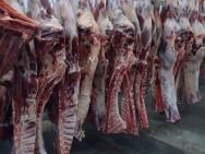 Aprenda Fácil Editora: Pecuária em expansão no Mato Grosso