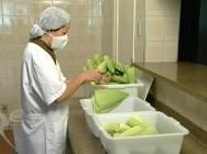 Dicas de higiene no processamento de milho verde