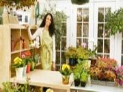 Conheça o Software CPT Floricultura
