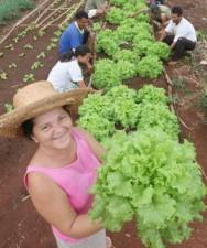 Aprenda Fácil Editora: Agricultura Familiar atenderá demandas da União