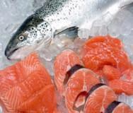 Consumo de peixe pode reduzir risco de câncer de próstata