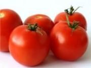 UFV cria sistema para triplicar a lucratividade do tomate