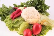 Congresso debate o papel do Brasil na produção de alimentos e bioenergia