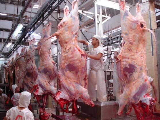 Fotos de carnes bovinas 70