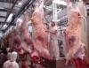 Uso de tecnologias intensifica os sistemas de produção na pecuária de corte