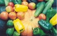 Governo institui medidas para desenvolver a agricultura sustentável