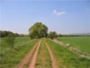 A falta de planejamento pode tornar um grande empecilho para o administrador rural.