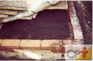 Criação de minhocas: transformação dos alimentos consumidos