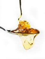 Apicultores gaúchos incentivam o consumo de mel