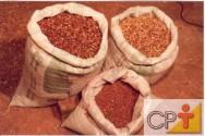 Cultivo e uso do nim: a planta